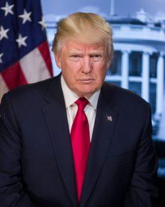 Donald Trump, Public Domain