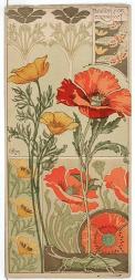 Etudes de Fleurs, Riom