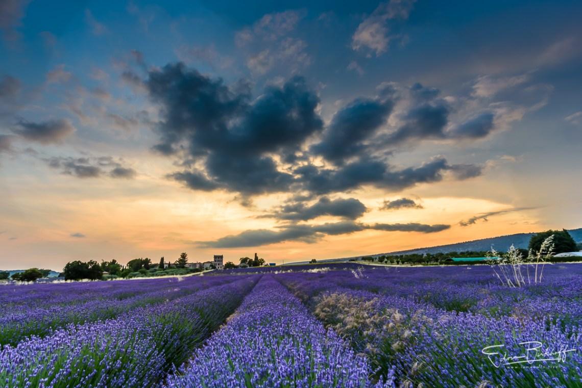 20170621_Provence_2184