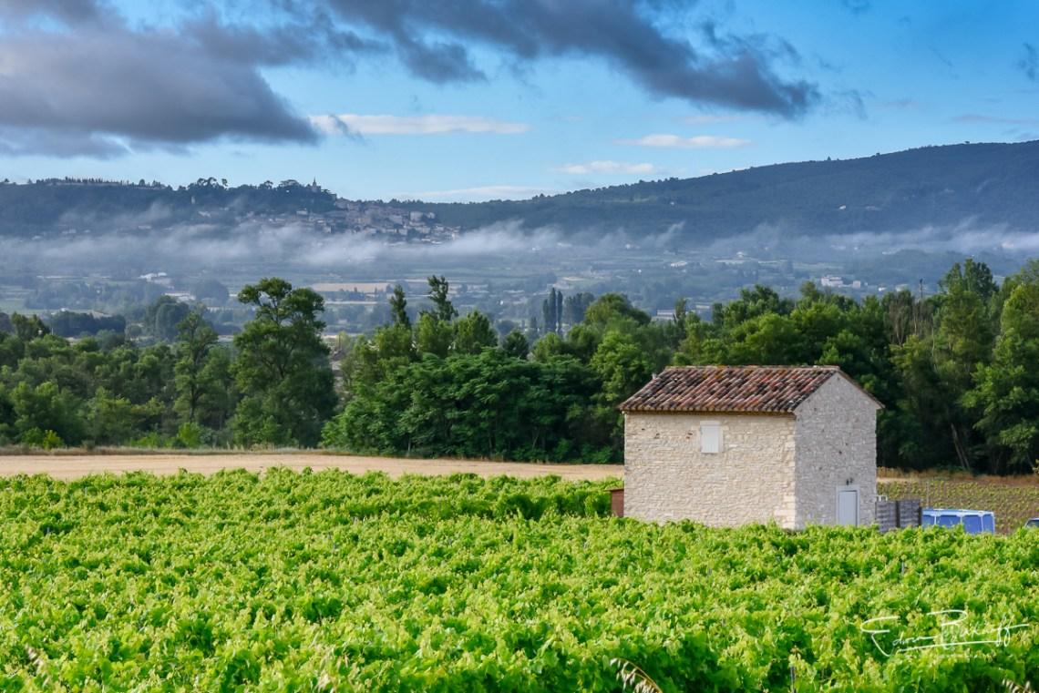 20170629_Provence_2916