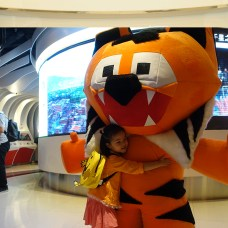 """Ajitora- the mascot spreading the Tx2 message of doubling number of tigers as the first Hong Kong Kids International Film Festival (kiff.asia) opened on Global Tiger Day as well"