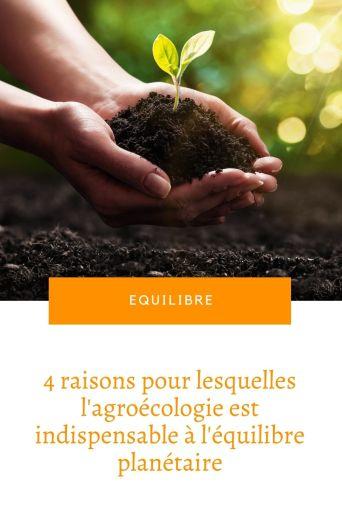 mains qui tiennent une pousse végétale et de la terre