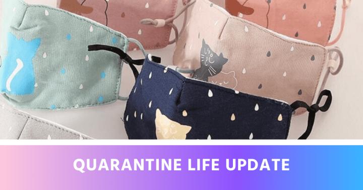 Quarantine Life Update
