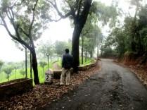 Archedin, Coonoor, Nilgiris