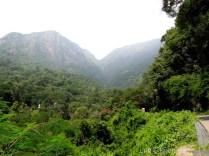 Burliyar - Mettupalyam Coonoor Ghat Road