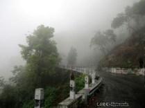 Mettupalayam - Coonoor Ghat Road