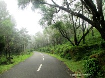 road to ponmudi...