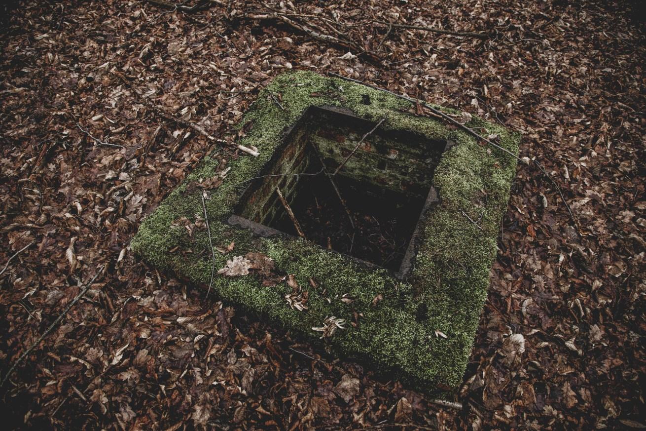 Waldhaus Niemitz (11)