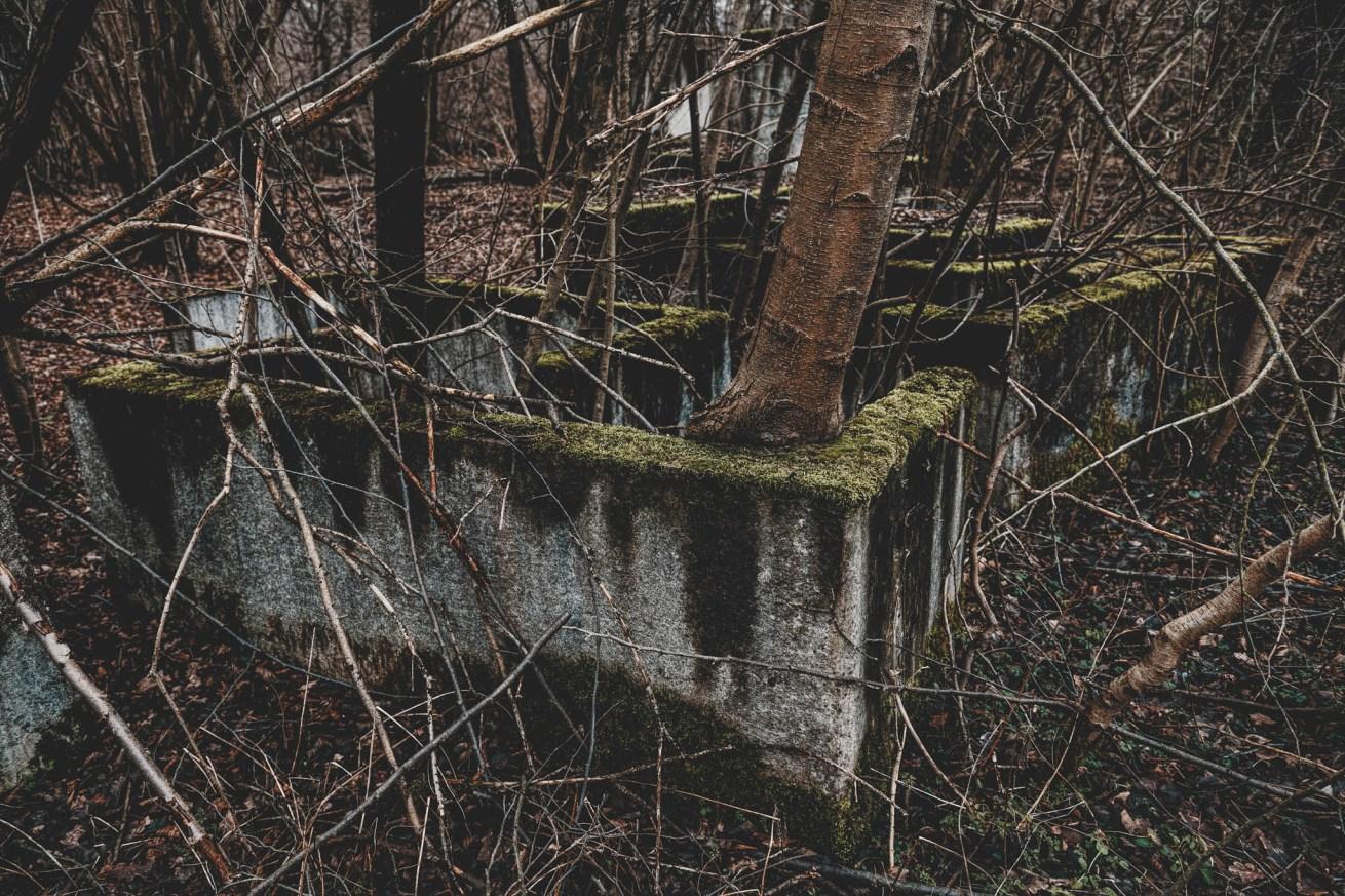 Waldhaus Niemitz (8)