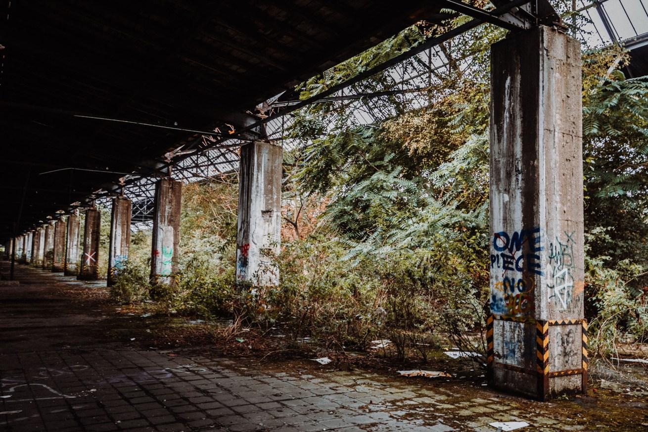 Lostplace - Güterbahnhof (20 von 117)