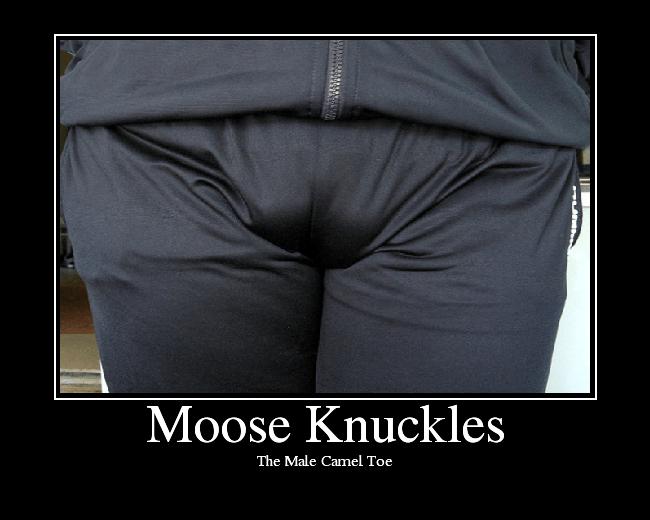 Moose Knuckles (1/3)