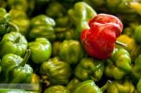 chiles rojo verde mercado merida yucatán