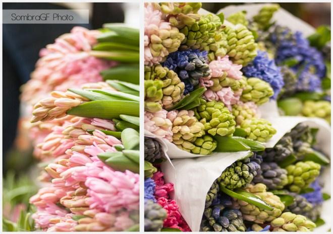 copenhague dinamarca mercado flores
