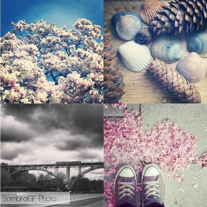resumen instagram iamsombra