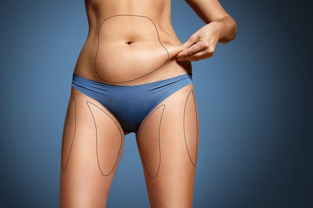 body fats