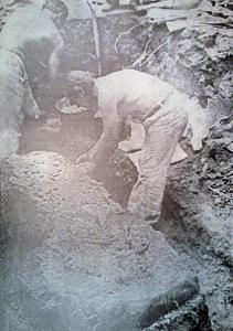 El Arqueólogo J. M. Cruxent protege una de las osamentas que fueron halladas en la iglesia.