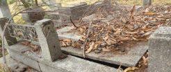 Tumba profanada en el Cementerio El Carmen. Foto Marinela Araque Rivero.
