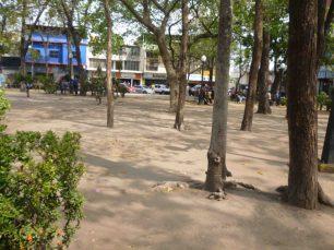 La grama desapareció. Foto M. Araque.