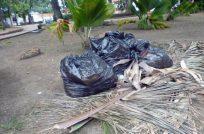 La basura sustituye el verde grama en la plaza Bolívar de Barinas. Foto M. Araque.