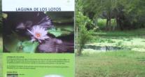 Señalización para el público, Laguna de los lotos, en el JBM.