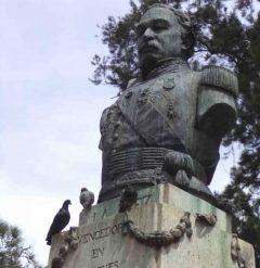 Las palomas han tomado el busto del general Páez como su morada.Foto Samuel Hurtado C., mayo 2017.