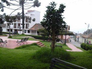 Los pinos y árboles nativos perfuman la plaza Bolívar de Jajó. Foto Páez Films / Panoramio.