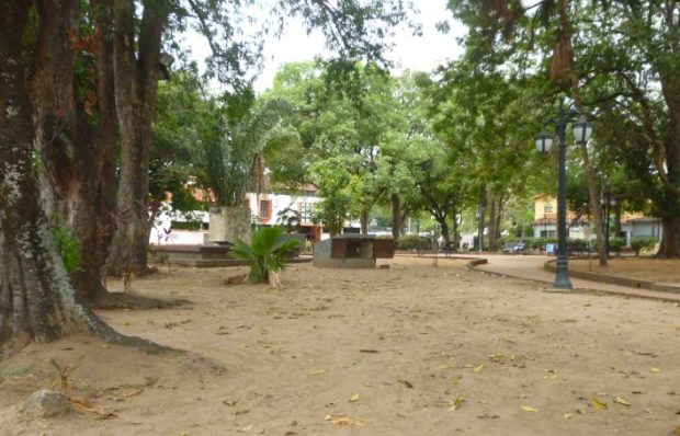 Hasta el cableado del sistema de riego se llevaron de la plaza Bolívar de Barinas, como evidencia la falta de grama. Patrimonio de Venezuela bajo la ola de robos de bronce y cobre.