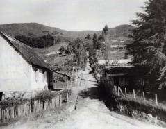 Casa Benitz. 1953.