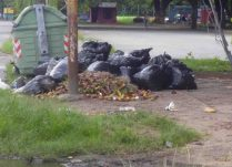 Basura acumulada en el parque Los Mangos, bien cultural de la ciudad de Barinas, Venezuela.