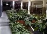 Jardín interno del Colegio Madre Ràfols. Trujillo, Venezuela. Hermanas de la Caridad de Santa Ana.