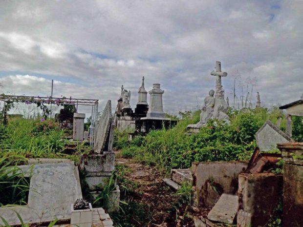La maleza cubre las tumbas del Cementerio Histórico de Ciudad Bolívar. Patrimonio cultural de Venezuela en peligro.