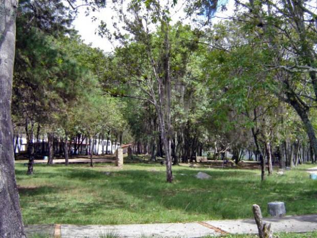 Monumento a Raúl Chuecos Picón Mérida. Patrimonio cultural de Venezuela.