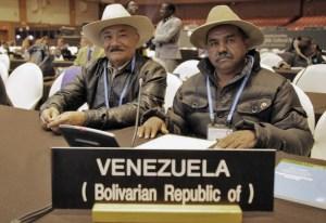 Cantos de trabajo del llano venezolano. Patrimonio inmaterial de la humanidad en peligro.