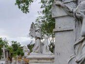 Cementerio Bella Vista de Barquisimeto, estado Lara. Patrimonio cultural de Venezuela en peligro.