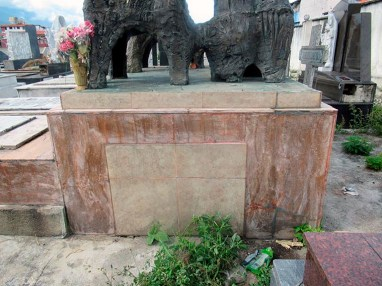Pequeñas formaciones vegetales en los alrededores del mausoleo de la familia Carnevali. Cementerio El Espejo, Mérida. Foto Samuel Hurtado Camargo, noviembre 2 de 2018.