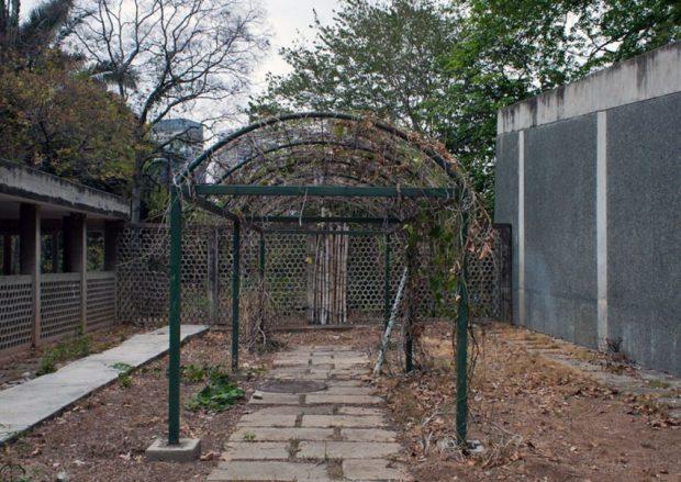 Jardín Botánico de Caracas - UCV. Foto Mairet Chourio / Efecto Cocuyo, abril 2019.