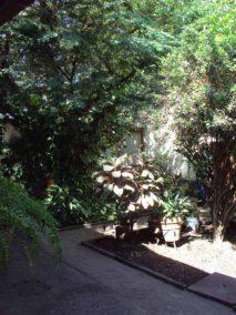 Jardines internos. año 2012. Foto archivo S. Hurtado