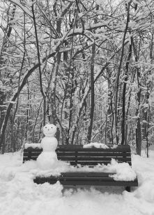 found mr. frosty sitting alone on the bench!