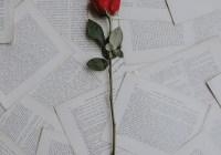 作家H:在愛情裡面,習慣可以改,觀念可以通,唯獨個性不會變!!