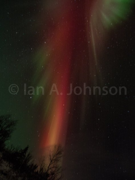 Do you see the angel in this Aurora?