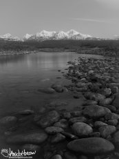 I want nothing more than to walk the banks of this river all the way to the Alaska Range.