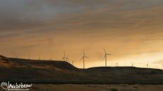 Windfarms in the sunset. Oregon.