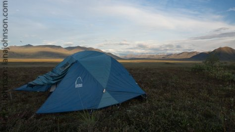 Camping on the high tundra is pretty comfortable! Like a mattress.