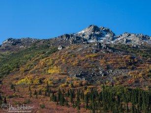 A mosaic hillside of color in Denali National Park