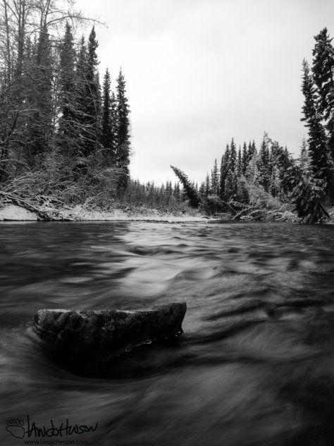 This black-and-white photo captures the flowing stream and the contrast of fresh snow to the water.
