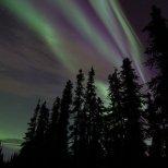 October 6th : Streaks of purple in a beautiful sun-kissed aurora display