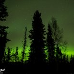 October 19th : Green glow of the Aurora Borealis