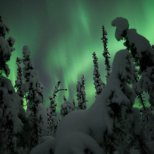December 5th : Burst of Aurora in a winter wonderland