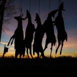 November 8th : Sunrise of a successful hunt