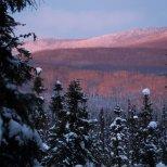 November 23rd : Pink sunrise